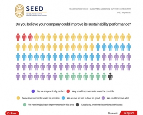 SEED SustainABLE Leadership Survey 2020